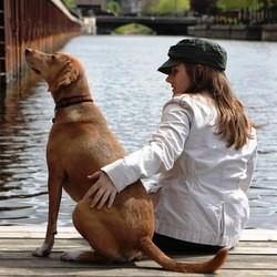 chien renifleur chien d'accompagnement allergies