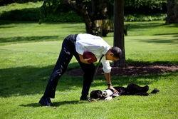 chien Bo Obama