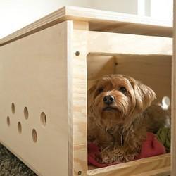 des objets extravagants pour nos animaux de compagnie conso wamiz. Black Bedroom Furniture Sets. Home Design Ideas