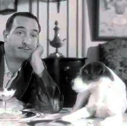 Cannes la palm dog pour le chien de jean dujardin for Vrai nom de jean dujardin
