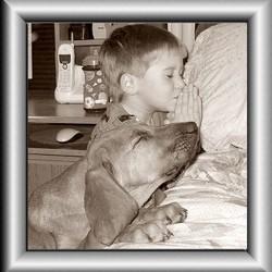 chien et enfant prient