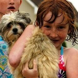 relation chien et enfant