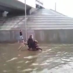 un chien pousse le fauteuil roulant de son maître dans une rue inondée