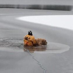 une femme se noie dans un lac gelé en tentant de sauver son chien