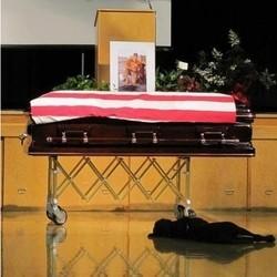 chien loyal militaire mort