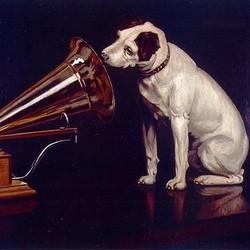 chaine hifi chien musique