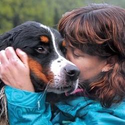 le sauvetage d'un chien perdu dans la montagne