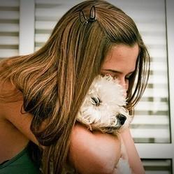 animaux de compagnie remonte le moral des êtres humains