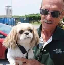 chien retrouvé 7 ans après disparition