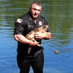 Policier sauvant un chien de l'eau