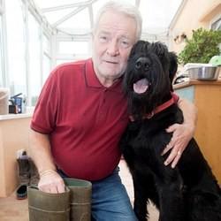 chien sauve maitre coup de foudre