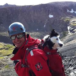 Le périlleux sauvetage de deux chiens coincés au bord d'une falaise
