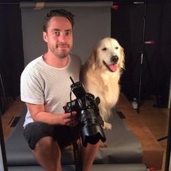 photographe chien âgé