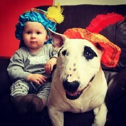 chien enfant amitié photos