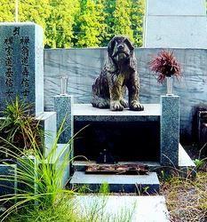 cimetière tombe pour chien