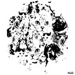 concours chiens et chats