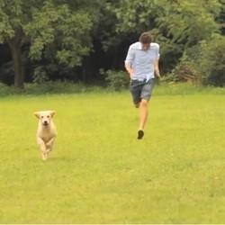 un homme imite un chien