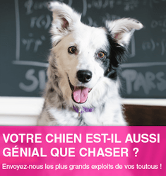 concours chaser