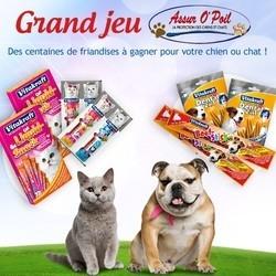 concours friandises chien chat