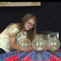 Concours pour gerbilles