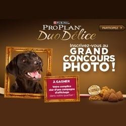 concours photos chiens pro plan