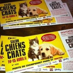 concours salon chiens chats