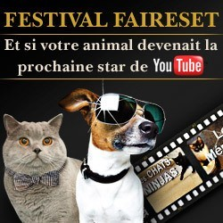 concours video animaux faireset