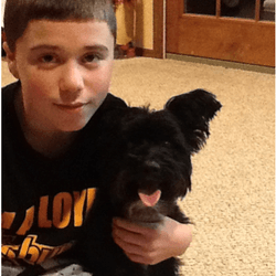 un chien sauve sa famille