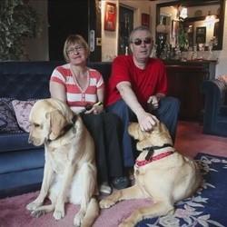 Ils trouvent l'amour grâce à leurs chiens guides