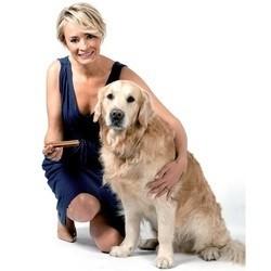 Santé hygiène bucco-dentaire du chien dentastix