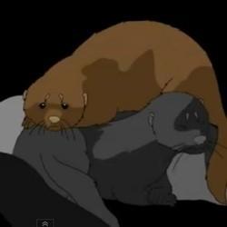 dessin anime elevage vison fourrure
