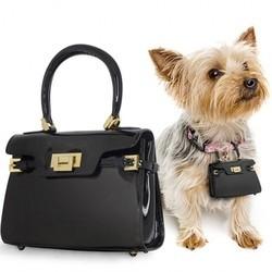 des sacs à main pour chien