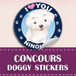 concours doggysticker