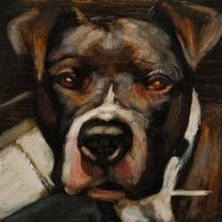 chien abandon euthanasie
