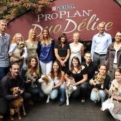 les chiens les plus heureux de France