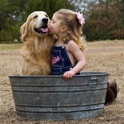 chien embrasser bisou hygiène
