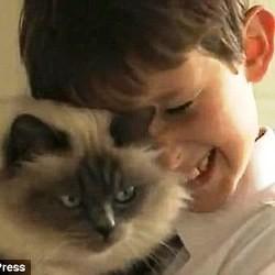 chat aide enfant mutisme