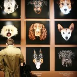 expo photo chiens de célébrités