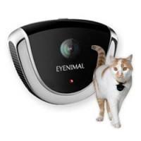 caméra eyenimal pour chiens et chats
