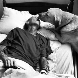 cancer femme maladie chien