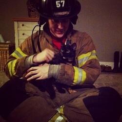 sauvetage d'un chat coincé dans une cheminée