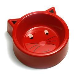 gamelle chat eau été vacances