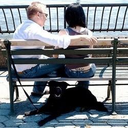 garde alternee chien couple