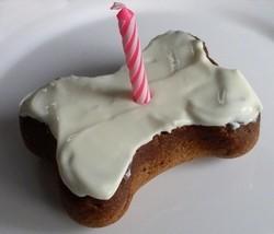 gâteau chien os