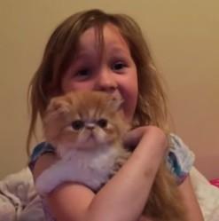 Une fillette et son chaton