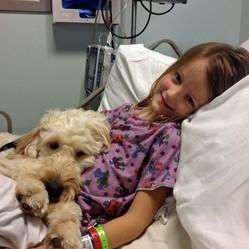 Lilybelle, le chien qui flaire les aliments dangereux pour sauver sa maîtresse