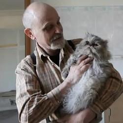 homme 250 chats creteil abandon carlo