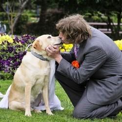 homme se marrie avec chien