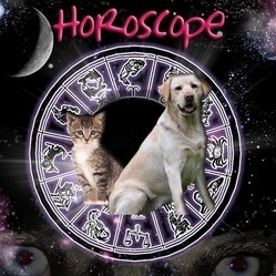 Visuel horoscope Wamiz