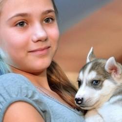 Olga et son husky